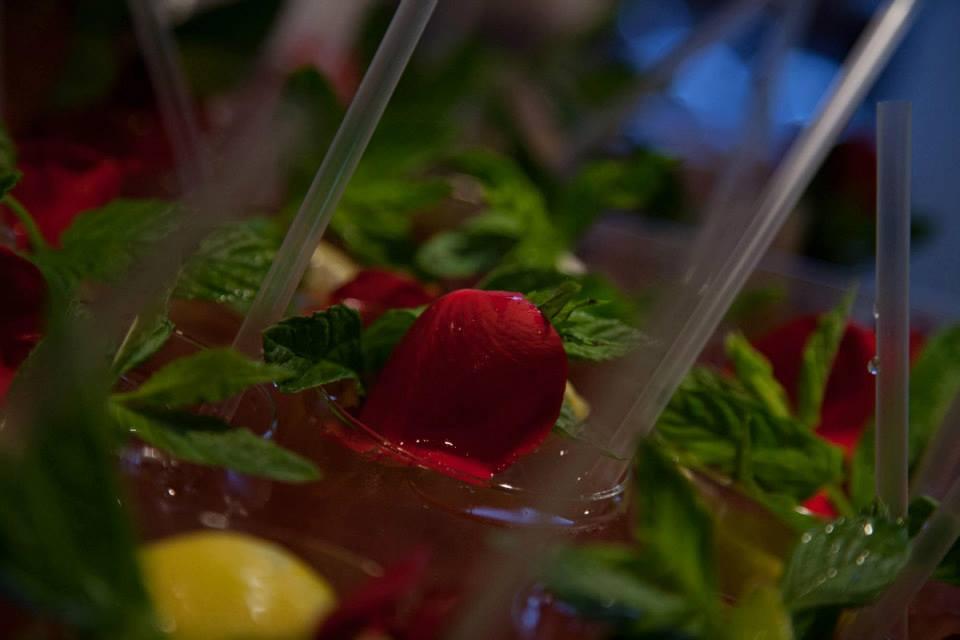 gin-drink